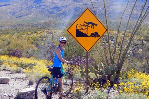 Cycling Saguaro National Park Arizona