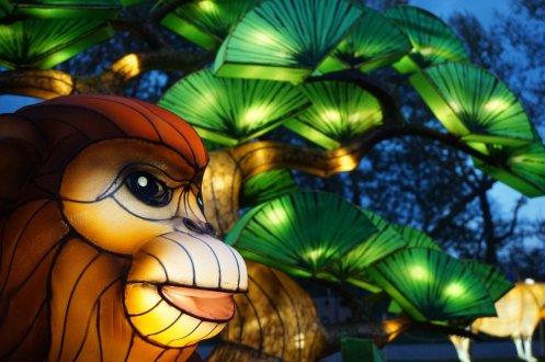 Lantern and garden festival Calgary Zoo