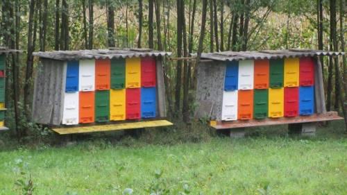 Slovenian bee hives