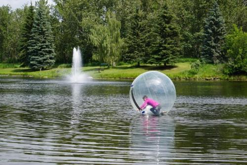 Bower Ponds water ball