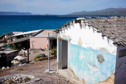 Buildings El Pardito Island