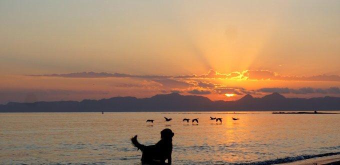 sunrise loreto