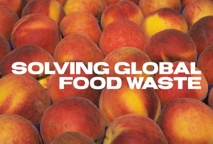 Food Rescue – Helping Solve Global Food Waste