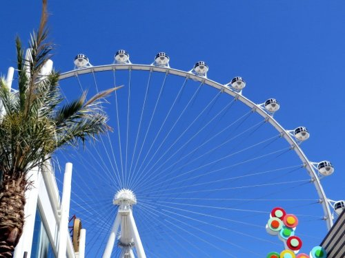 Things for kids to do in las vegas
