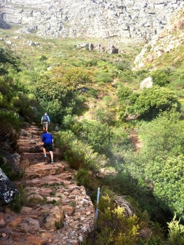 Hiking Table Mountain Capetown