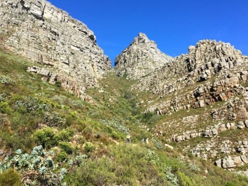 Hiking trails Table Mountain