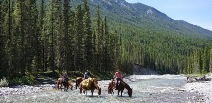 horseback riding banff
