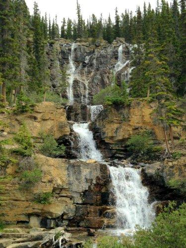 Tangle Falls Jasper National Park
