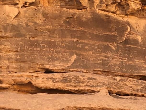 petroglyphs on rock in Jordan