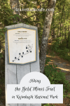 Hiking the Gold Mines Trail
