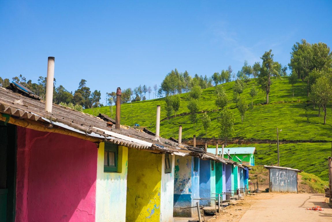 Tea plantation workers' houses in Munnar