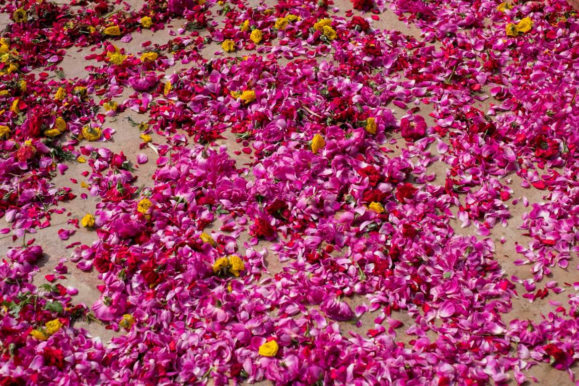 Flower petals on the floor outside a temple in Madurai.