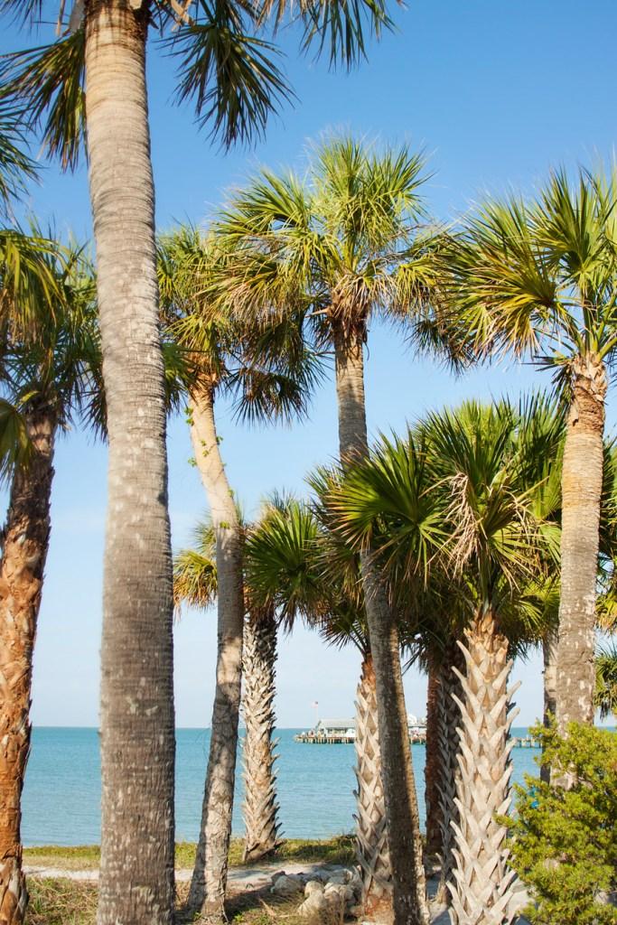 Anna Maria City Pier - Anna Maria, FL