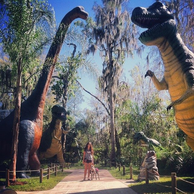 Dinosaur World - kitschy, but fun and dog-friendly