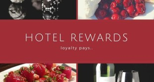 hotel loyalty clubs for free nights