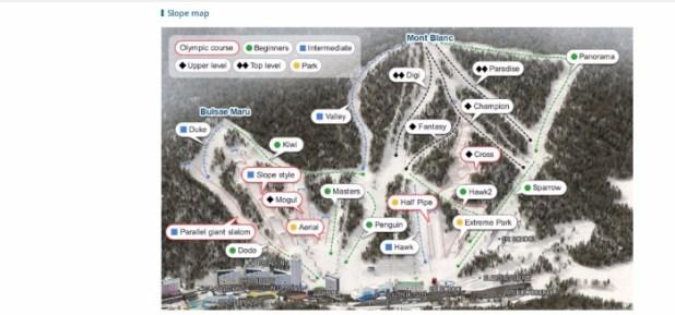 Phoenix Park ski slopes