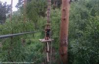 Swinging bridge crossings at Go Ape