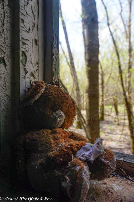Teddy bear in abandoned house in Zalissya