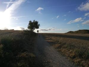le mesetas sul cammino  Cammino di Santiago terapeutico