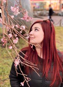 elina guarda i ciliegi