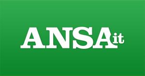 logo dell'ansa verde