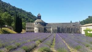 abbazia a gordes traveltherapists