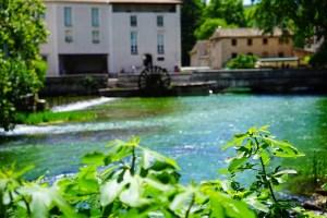 provenza traveltherapists