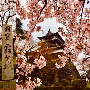 castello di Maruoka il mio viaggio in Giappone traveltherapists 4