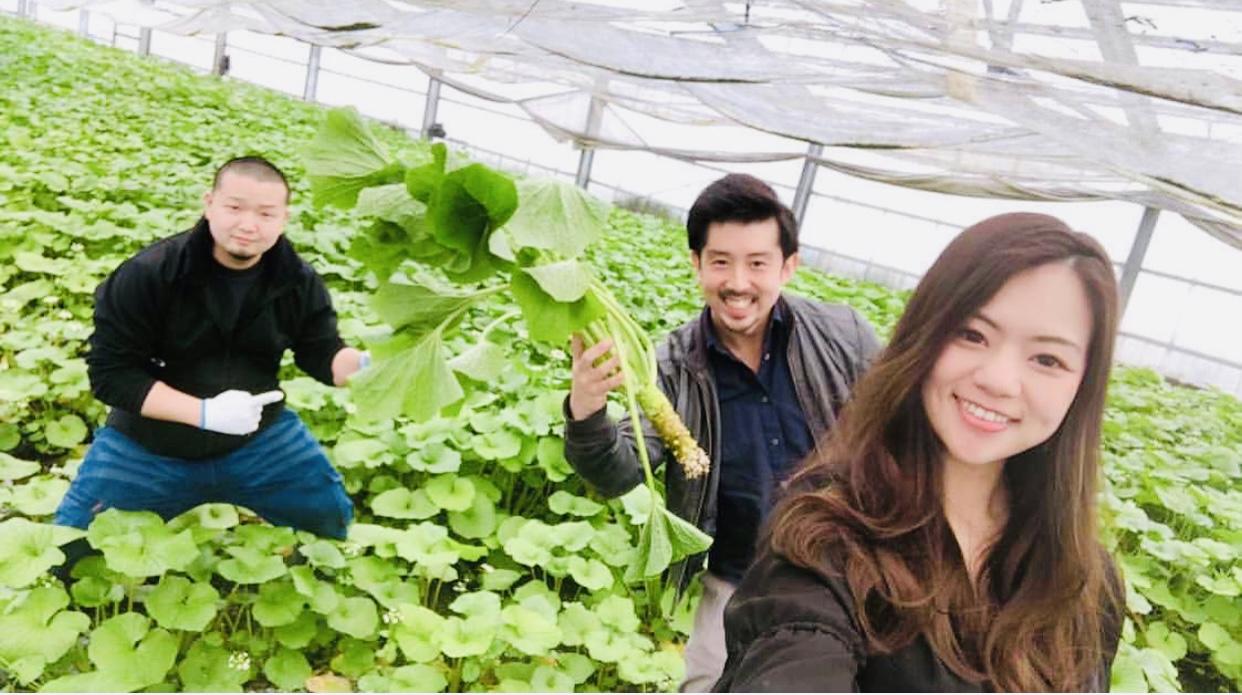 giapponesi che coltivano coltivazione wasabi il mio viaggio in giappone traveltherapists miglior blog di viaggio