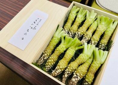 fusto wasabi cassetta il mio viaggio in giappone traveltherapists miglior blog di viaggio