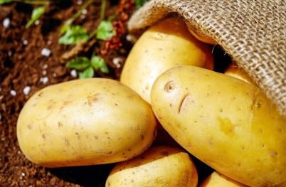 patate olanda aardappels traveltherapists
