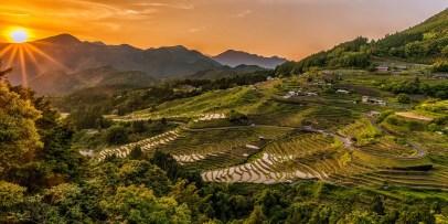 copertina terrazza di riso il mio viaggio in giappone Giappone la migliore vacanza post Covid-19 traveltherapists blo giappone miglior blog di viaggio