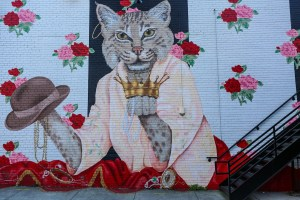 Raleigh Murals Cat Hat Crown