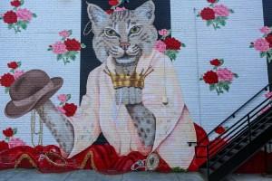 Raleigh-Murals- cats