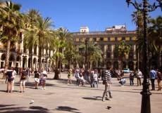 Hotels, restaurants, nightclubs and outdoor cafes maintain a constant buzz in the PLAZA REIAL, day and night.
