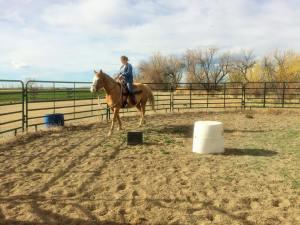 Wyoming basin cheval usa au pair citytrip travel blog voyage traveltothemoonandback travel to the moon and back