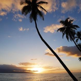 Surf hawaii maui usa travel blog voyage blogger états-unis amérique traveltotthemoonandback travel to the moon and back blog