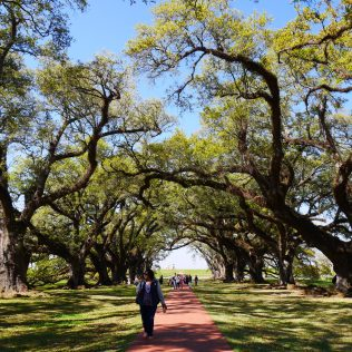 Plantation louisiane usa travel blog voyage blogger états-unis amérique traveltotthemoonandback travel to the moon and back blog