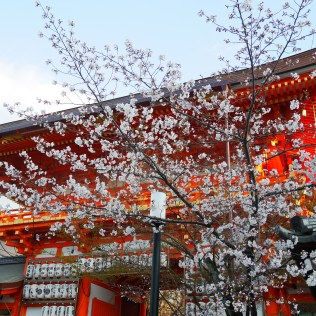 kyoto city travel kansai voyage blog traveltothemoonandback