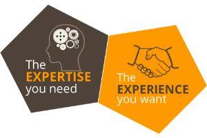 domain-expertise