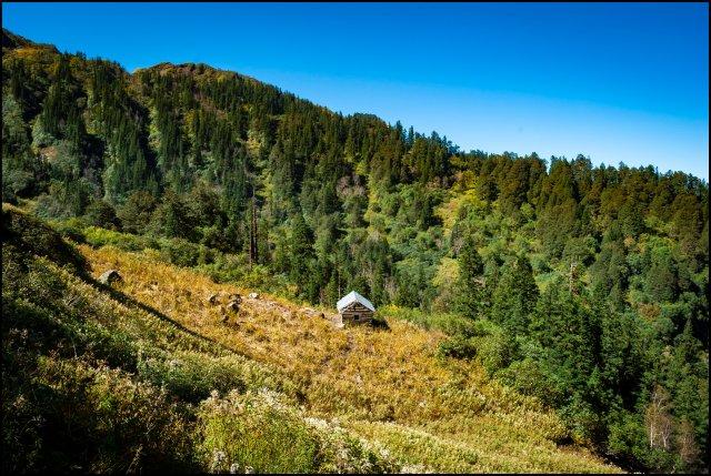 Subli Thatch, Jiva Nal Valley, Great Himalayan National Park, Himachal Pradesh, India