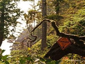 Wild Pacific Trail (10)