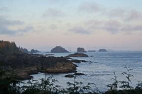 Wild Pacific Trail (26)