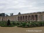 Versailles Gardens (22)