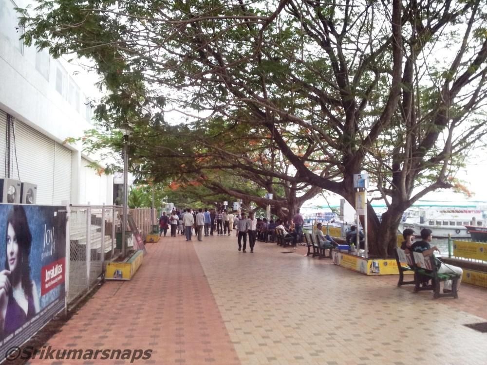 Kochi- rest of the trip (6/6)