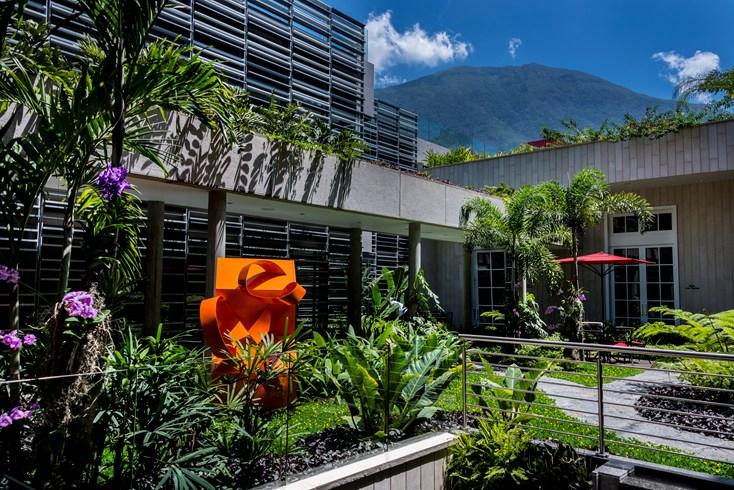 Cayena Caracas Garden