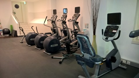Hilton Vienna Danube Waterfront Gym