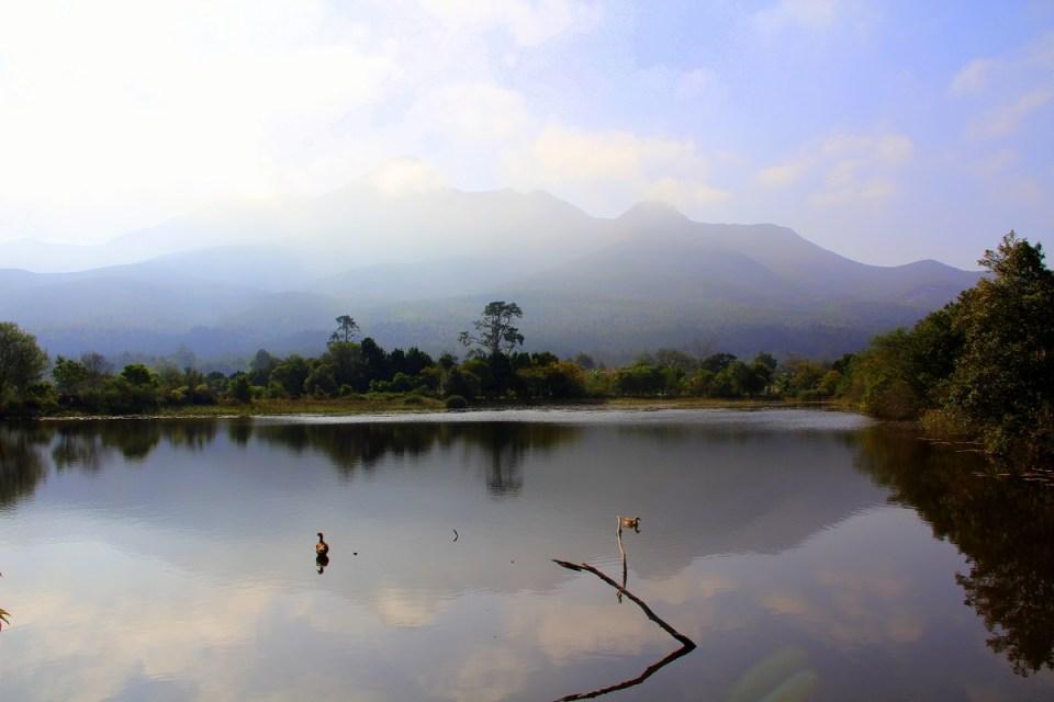 Mountainview (2)