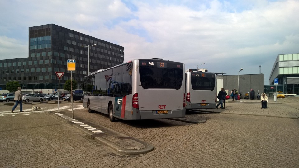 Buses in Rotterdam