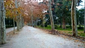 Running in Madrid Parque de El Retiro